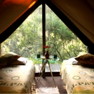 galleryimage-tent-inside