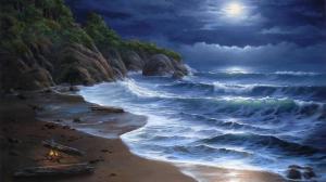 high_tide_full_light_moon_nature_beaches_1920x1080_hd-wallpaper-1553320